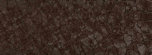 крокодил коричневый 2