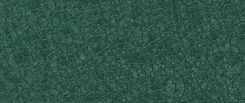 зелёная ящерица