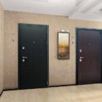 vxodnaya_dver_next_2